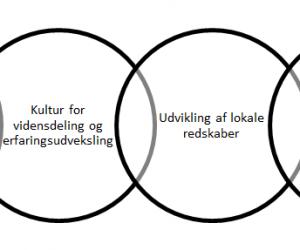 Figur til kompetenceudvikling item